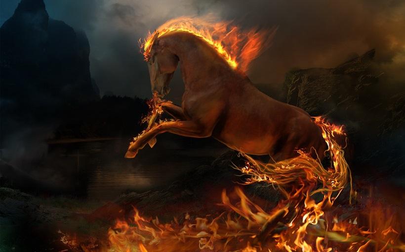 Con ngựa thần - Phần 1