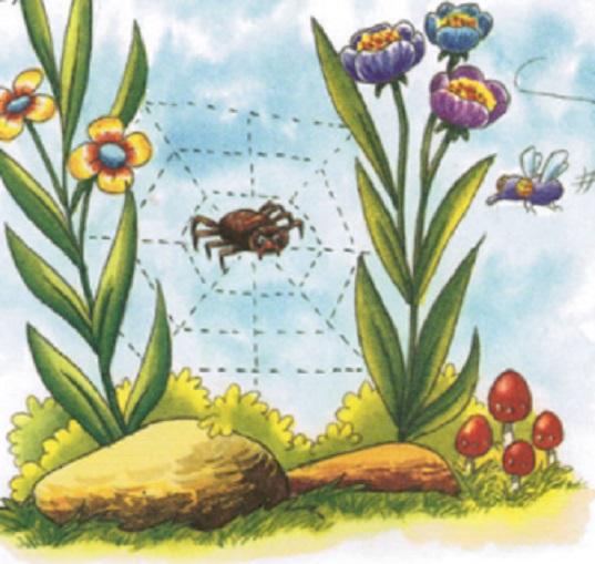 Con ruồi và con nhện