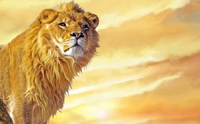 Sư tử là kẻ nào?