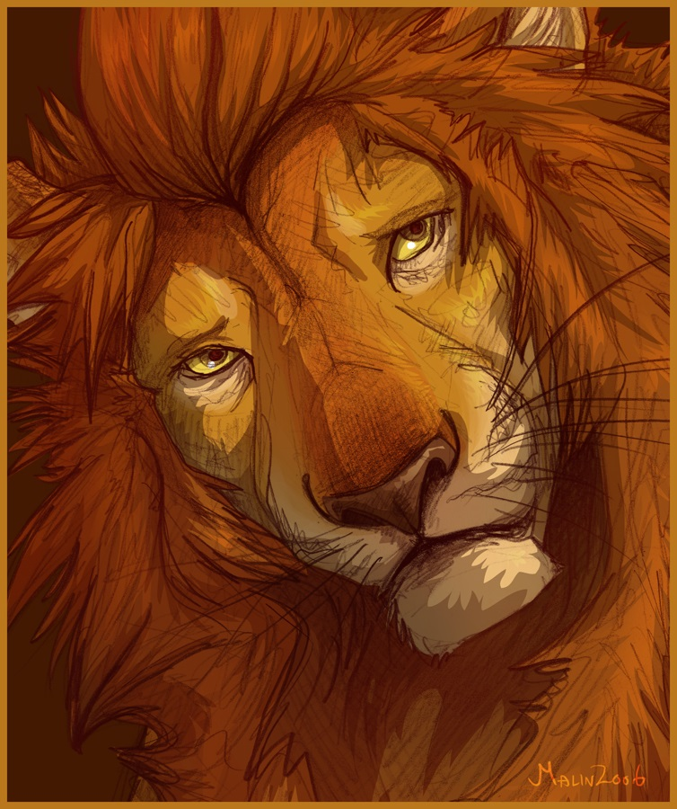 Sự tích con sư tử