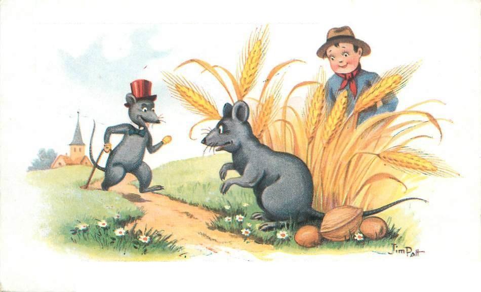 Chuột đồng và chuột nhà