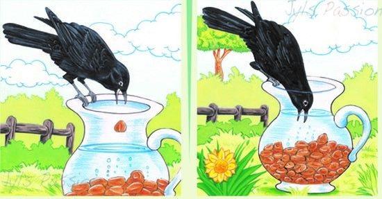 Con quạ và cái bình nước