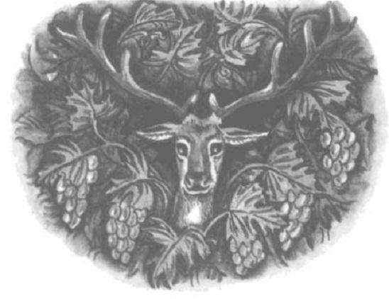 Hươu và ruộng nho