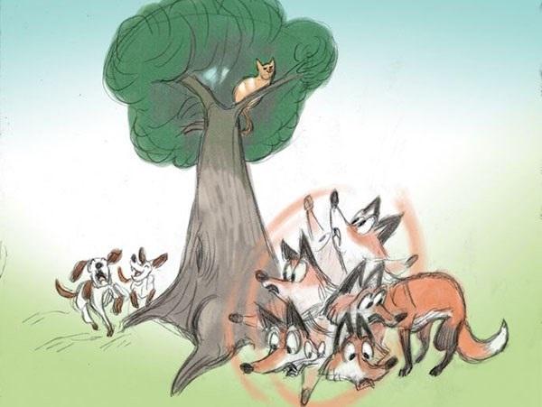 Mẹo của mèo và cáo