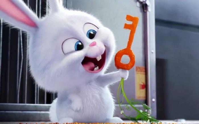 Ai ở trong nhà thỏ tai dài