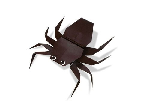Con gián, con nhền nhện