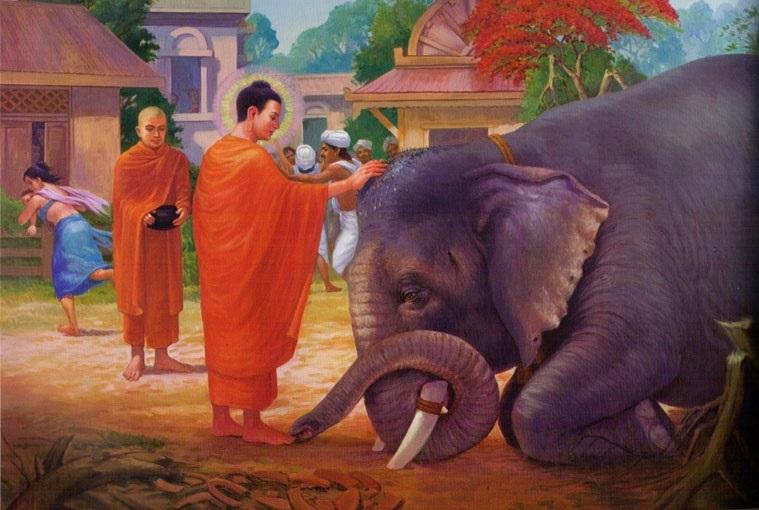 Đức Phật với con voi dữ