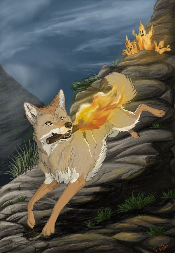 Coyote trộm lửa cho loài người