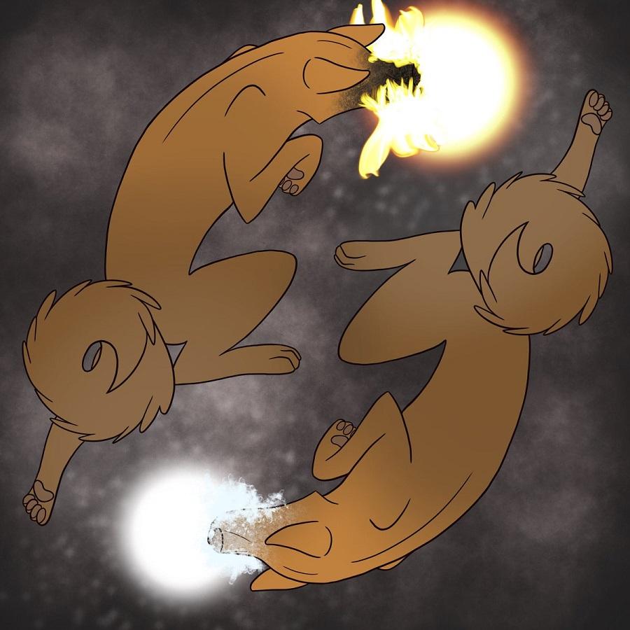 Chó lửa Bulgae