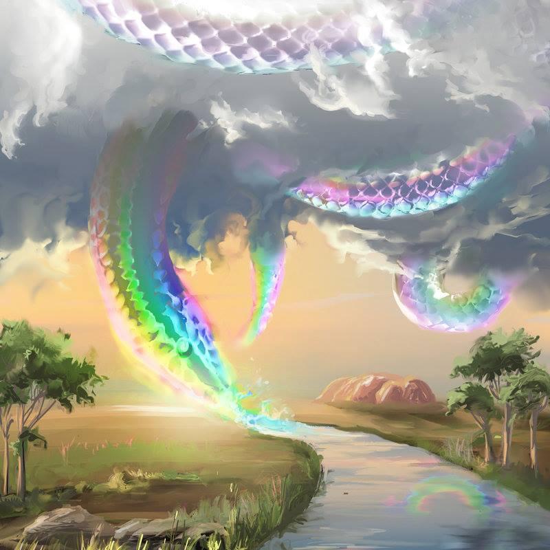Rắn cầu vồng - Rainbow Serpent