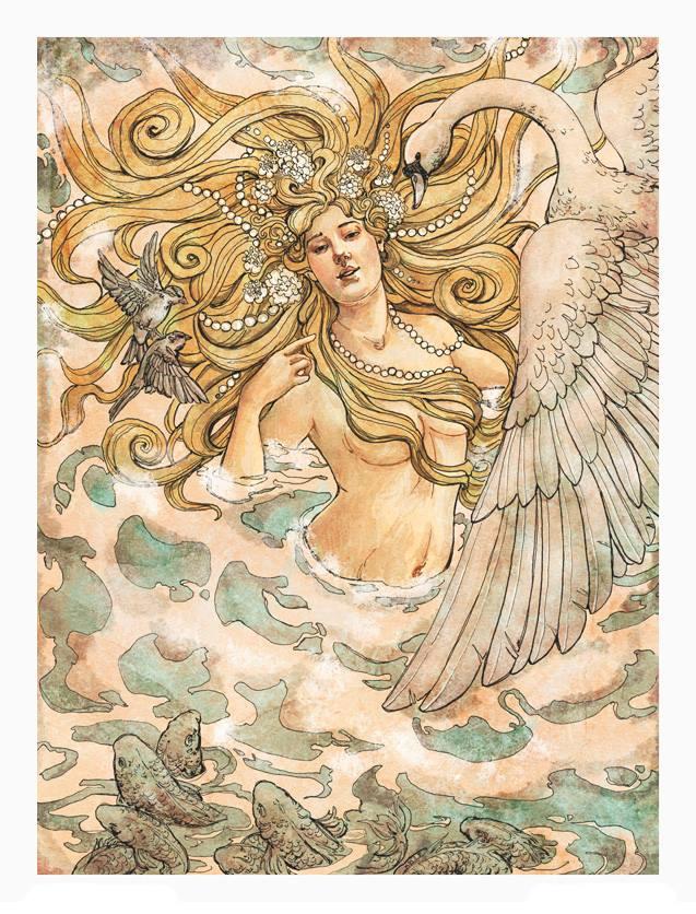 Sự ra đời của nữ thần tình yêu Aphrodite