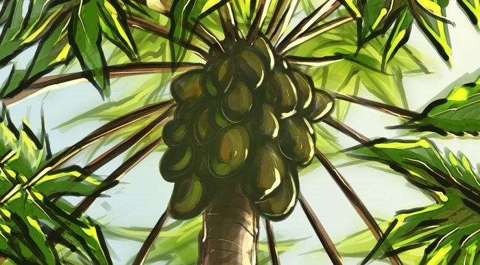 Sự tích cây đu đủ hay Papay cứu con bằng quả lạ vàng chín ngọt
