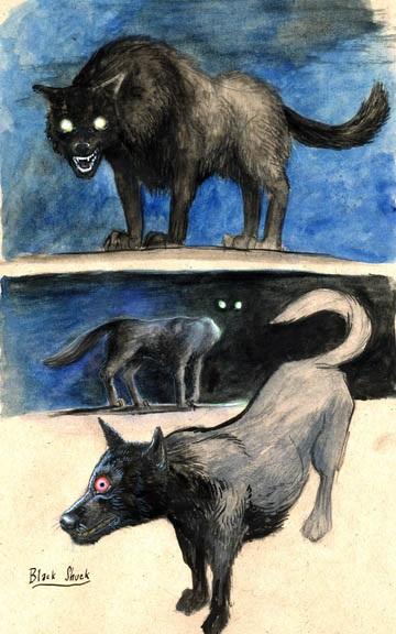 Con chó ma Black Shuck