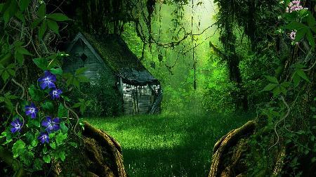 Ngôi nhà trong rừng