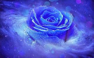 Truyền thuyết về hoa hồng xanh - Phần 1