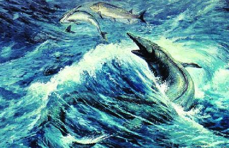 Sự tích con cá nược