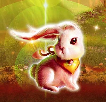 Sự tích thỏ tai dài đuôi ngắn