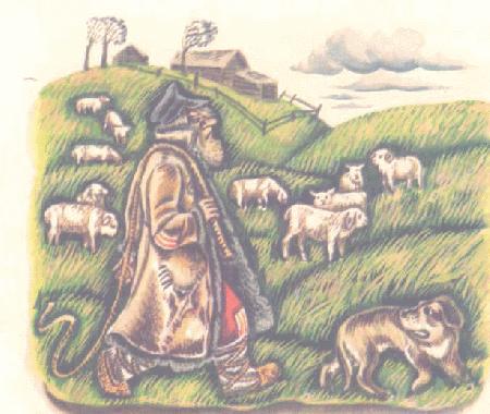 Bác chăn cừu