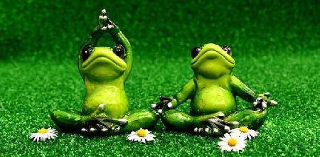 Hai con ếch
