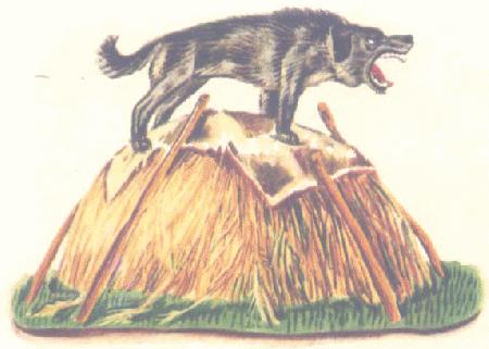 Chó nằm trên đồng cỏ khô
