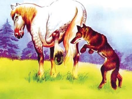 Sói và ngựa cái