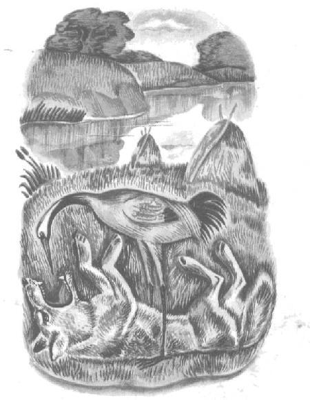 Sói và sếu
