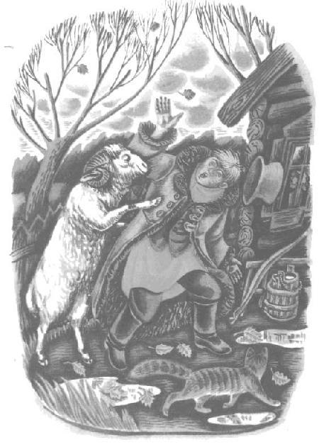 Mèo và cừu
