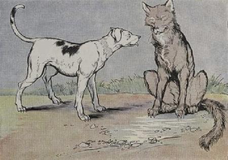 Chó sói và chó nhà