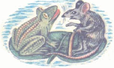 Êch, chuột đánh nhau và diều hâu tóm gọn