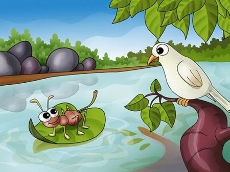Kiến và chim bồ câu