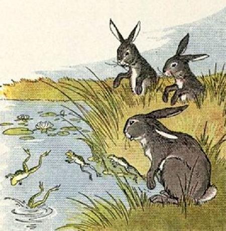 Thỏ và ếch
