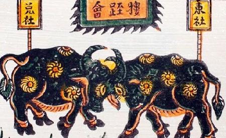 Nguồn gốc và nơi phát tích lễ hội chọi trâu Đồ Sơn