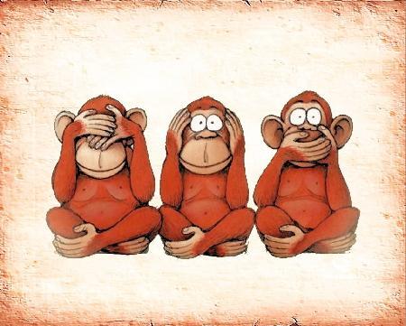 Loài khỉ chai đít