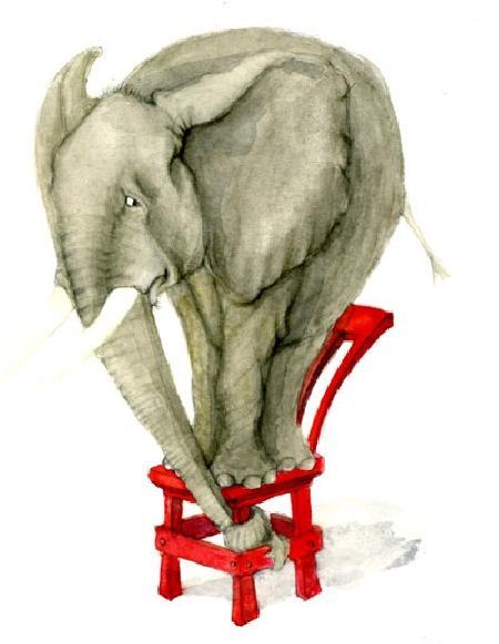 Tại sao con voi có vòi
