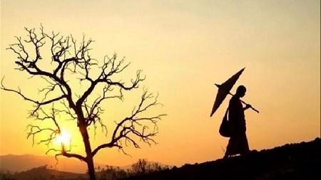 Phước báo của sự bảo vệ sanh linh