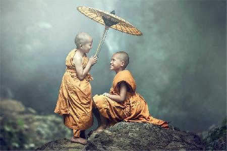 Chuyện cứu vật, vật trả ơn - Cứu nhân, nhân trả oán trong nhà Phật
