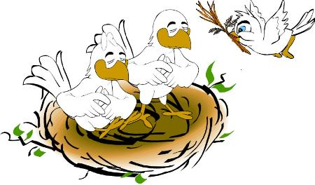 Lòng hiếu của con chim Oanh Vũ