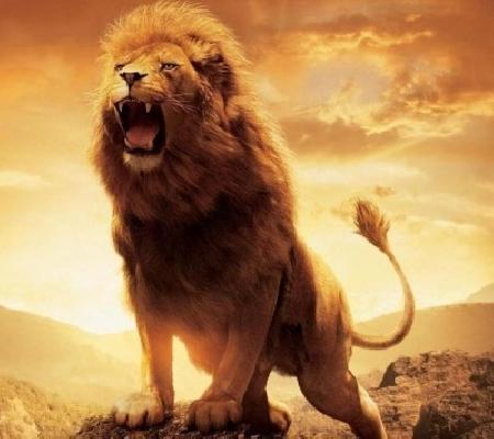 Con sư tử trọng pháp