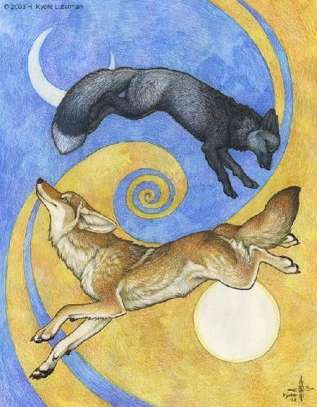 Coyote và Silver Fox