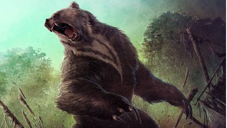 Stiff-leg Bear