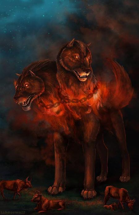 Chó ngao hai đầu Orthus