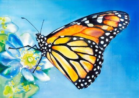 Sự tích loài bướm ở Philippines
